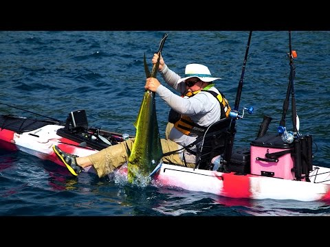Kayak Fishing for Big Dorado!